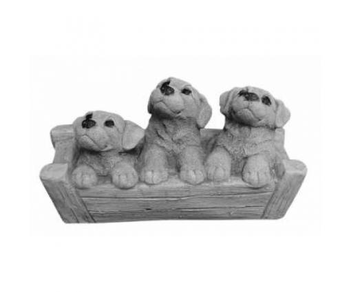 3 jonge hondjes in mand