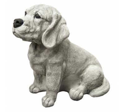 Beagle zittend