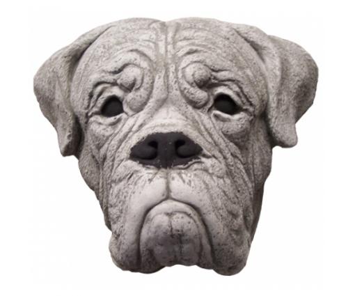Bordeaux Dog kop