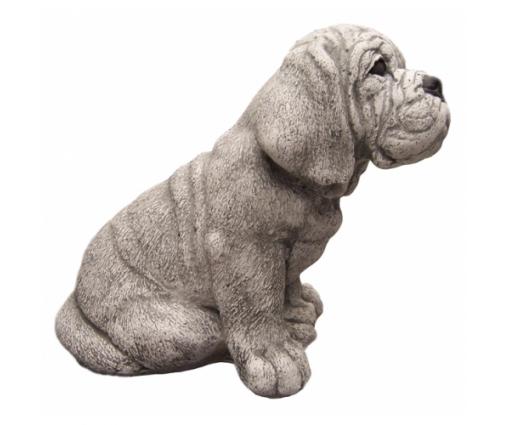 Bordeaux Dog, pup zittend