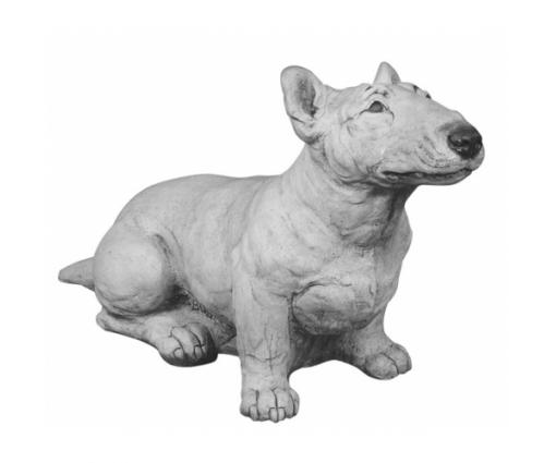 Bull Terriër miniatuur
