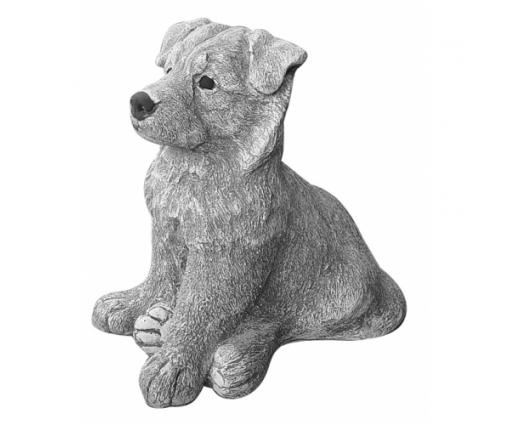 Duitse Herdershond pup zittend