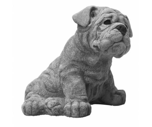 Engelse Bulldog, pup zittend