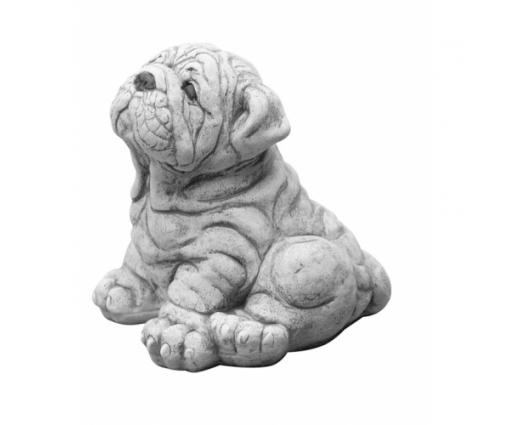 Engelse Bulldog puppie