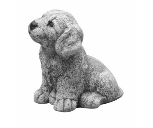 Golden Retriever puppie klein