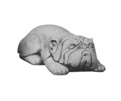 Hond Bulldog liggend
