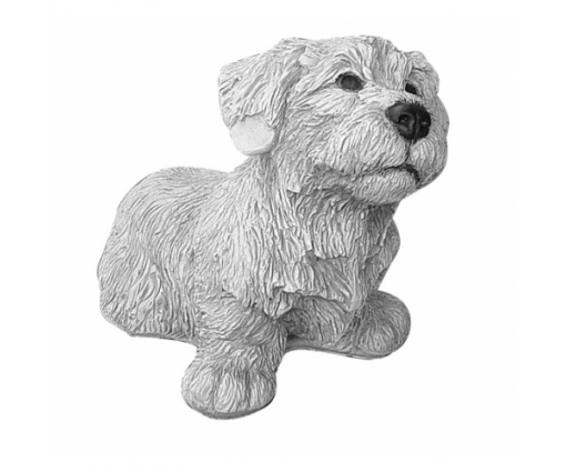 Irish Glen of Imaal Terriër, pup