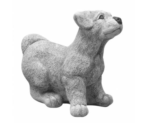Jack Russell puppie klein