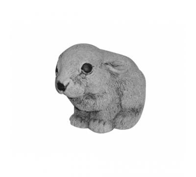 Jong konijntje zittend