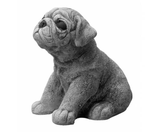 Mopshond, pup zittend