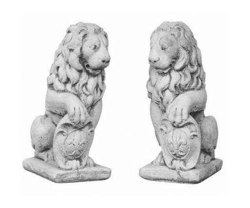 Set leeuwen links en rechts klein
