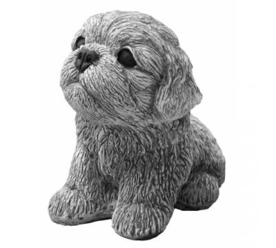 Shih-Tzu pup zittend