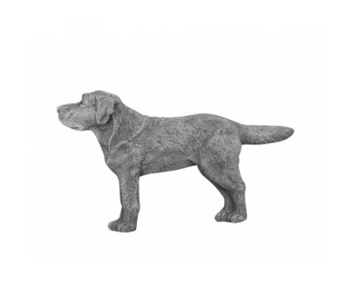 Wandhanger Labrador Retriever